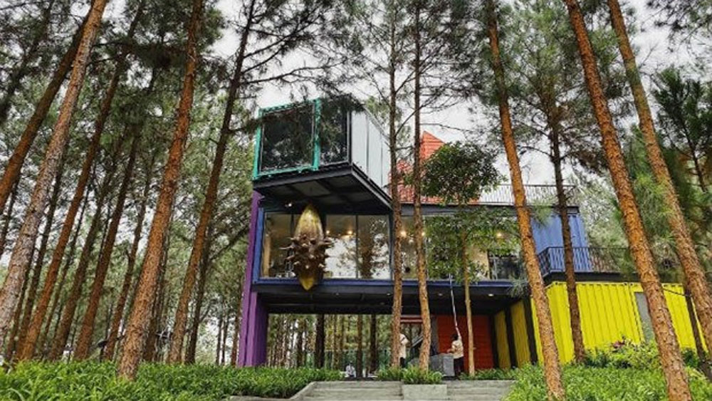 Arts in the Forest exhibition, Vinh Phuc's resort, Flamingo Dai Lai Resort, Vinh Phuc province, Vietnamese and international artists, Dai Lai pine forest