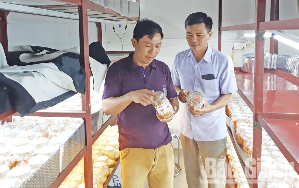 Bắc Giang, Lạng Giang, nông thôn mới,  mỗi  xã  một sản phẩm
