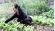 Cụ bà 73 tuổi ở Bắc Giang làm đơn ra khỏi danh sách hộ nghèo