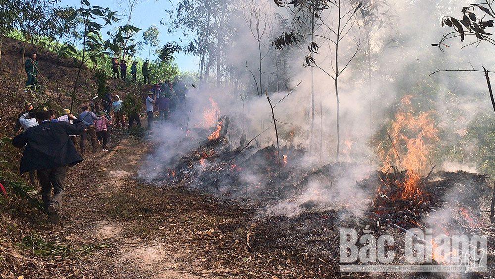 diễn tập cháy rừng, cháy rừng, Bắc Giang, Sơn Động, Lệ viễn