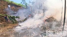 Sơn Động diễn tập phòng cháy, chữa cháy rừng