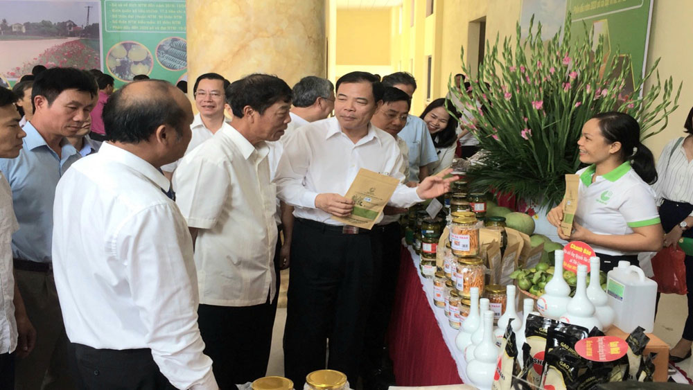 Lang Giang boost agricultural production under value chain