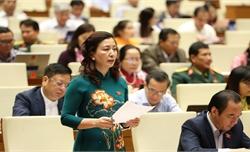 Trưởng Đoàn Đại biểu Quốc hội tỉnh Bắc Giang Lê Thị Thu Hồng: Xác định những nhiệm vụ, giải pháp cụ thể trong ban hành văn bản quy phạm pháp luật
