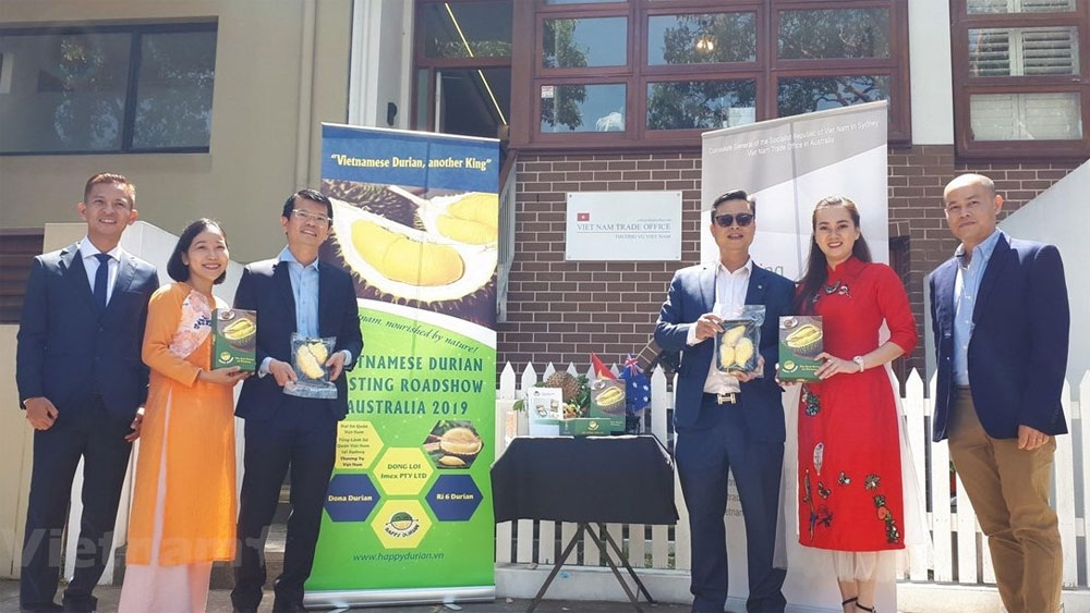 Vietnamese durian promotion campaign, Australia, Vietnam Trade Office, royal antique car, typical fruit, Vietnamese agricultural products