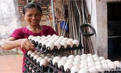 Thêm cơ hội tiếp cận  quỹ quốc gia về việc làm