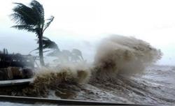 Khẩn trương ứng phó áp thấp nhiệt đới khả năng mạnh thành bão