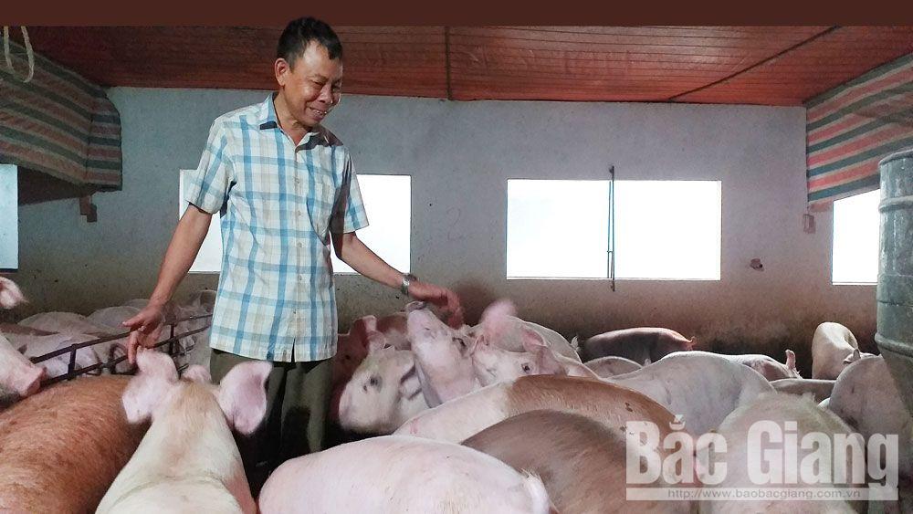 Nguyễn Bá Hữu (SN 1964) ở thôn Đầm Lác, xã Việt Ngọc, huyện Tân Yên, Bắc Giang, trang trại