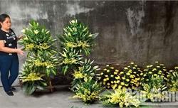 Dịch vụ tang lễ trọn gói: Thuận tiện, nhanh gọn