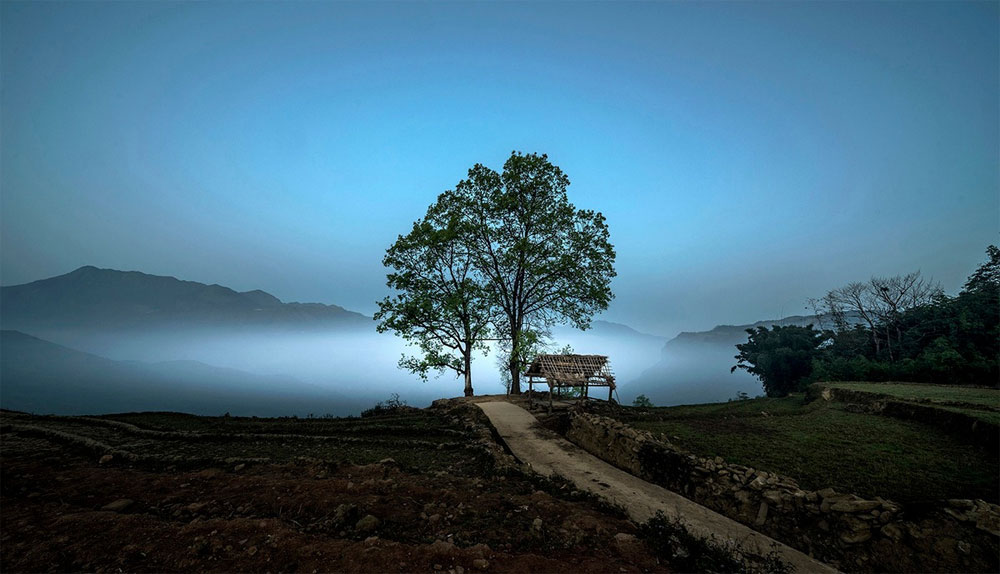 head in the clouds, Vietnam mountain commune, golden rice season, highland commune, Y Ty commune, sea of white clouds