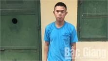 Bắc Giang: Một đối tượng cố ý hủy hoại tài sản ra đầu thú