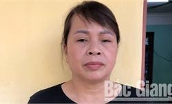 Công an huyện Lạng Giang làm rõ hai vụ phạm pháp hình sự