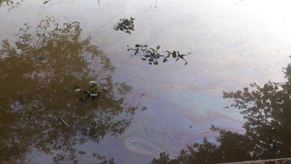 Hải Phòng, vỡ đường ống dẫn, 7 khối dầu, tràn ra môi trường, Công ty Xi măng Chinfon Hải Phòng