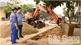 Lục Ngạn: Chỉnh trang hè phố phục vụ Hội chợ cam, bưởi và các sản phẩm đặc trưng