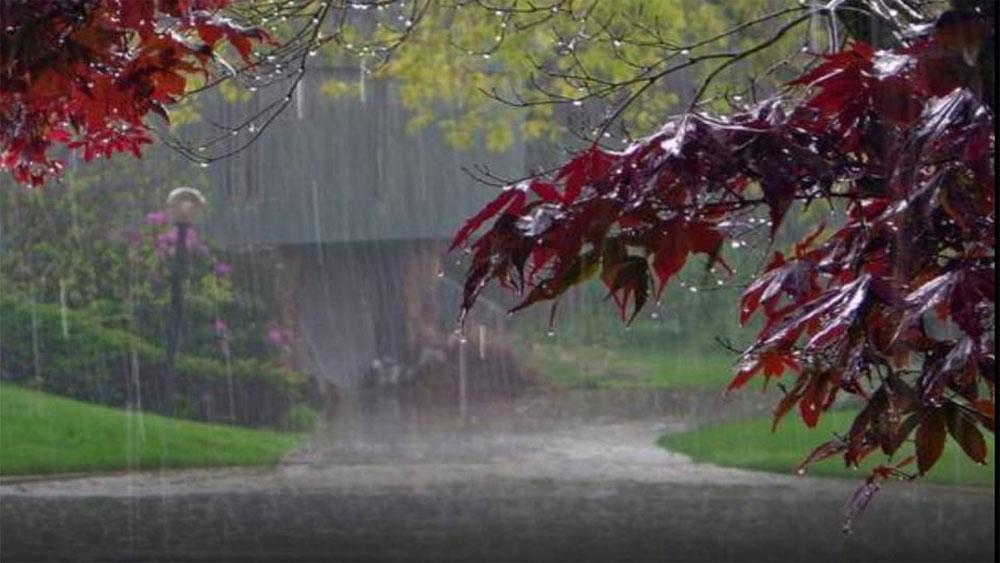 Dự báo thời tiết 14-11, Không khí lạnh, Bắc Bộ mưa, giảm nhiệt sâu