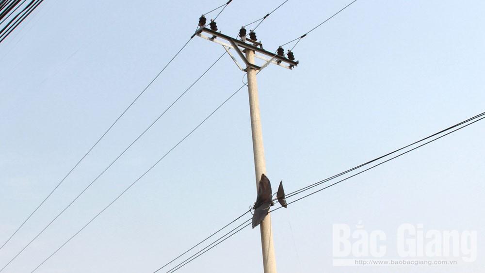 an toàn lưới điện,  thú chơi diều, ngành điện, sự cố, Bắc Giang