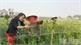 Lợi ích kép từ tổ phụ nữ liên kết sản xuất ở Lạng Giang