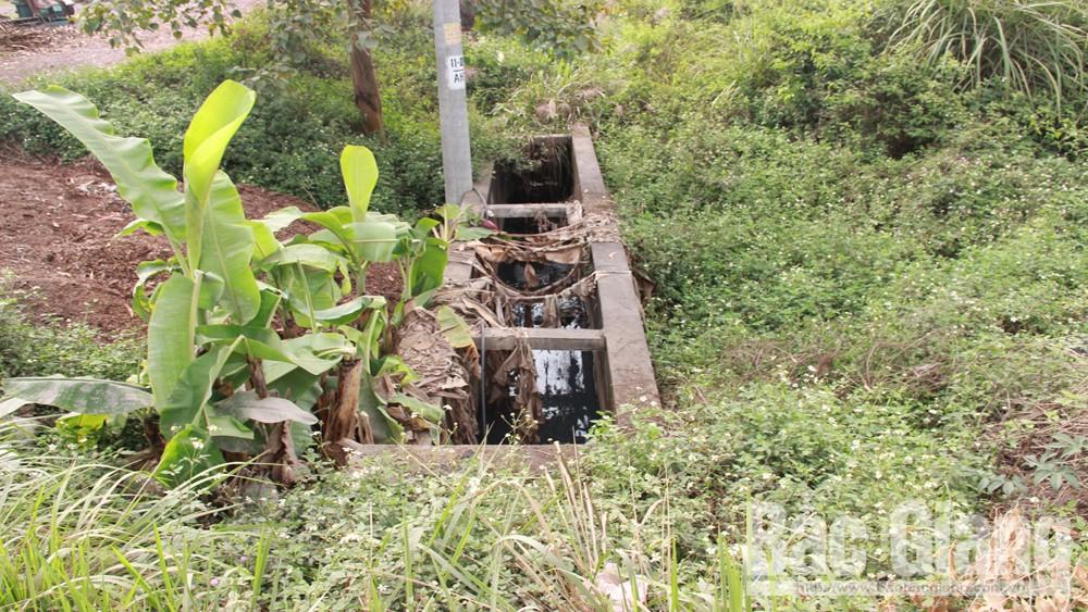 Khắc phục, điểm sụt lún, trên đường tỉnh 292