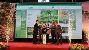 Fair promotes oranges and typical agricultural products in Ha Giang Province