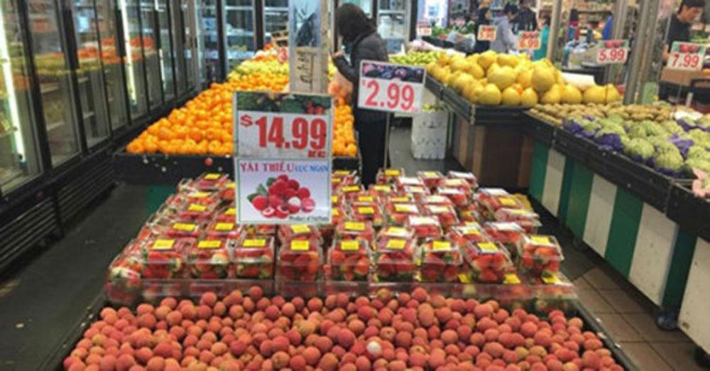 Long journey, Vietnamese fruits, Australia,  firm foothold, fresh Vietnamese fruit, Vietnamese agricultural sector, trade partnership opportunities