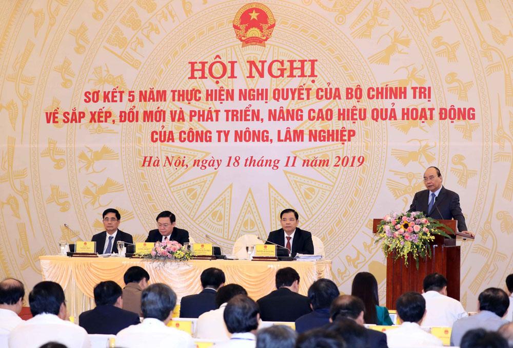 Thủ tướng, Xử lý nghiêm, trường hợp cố tình, làm chậm, lợi ích nhóm, sắp xếp các công ty nông, lâm nghiệp