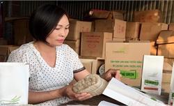 Bắc Giang nâng giá trị cho sản phẩm nông sản cấp tỉnh