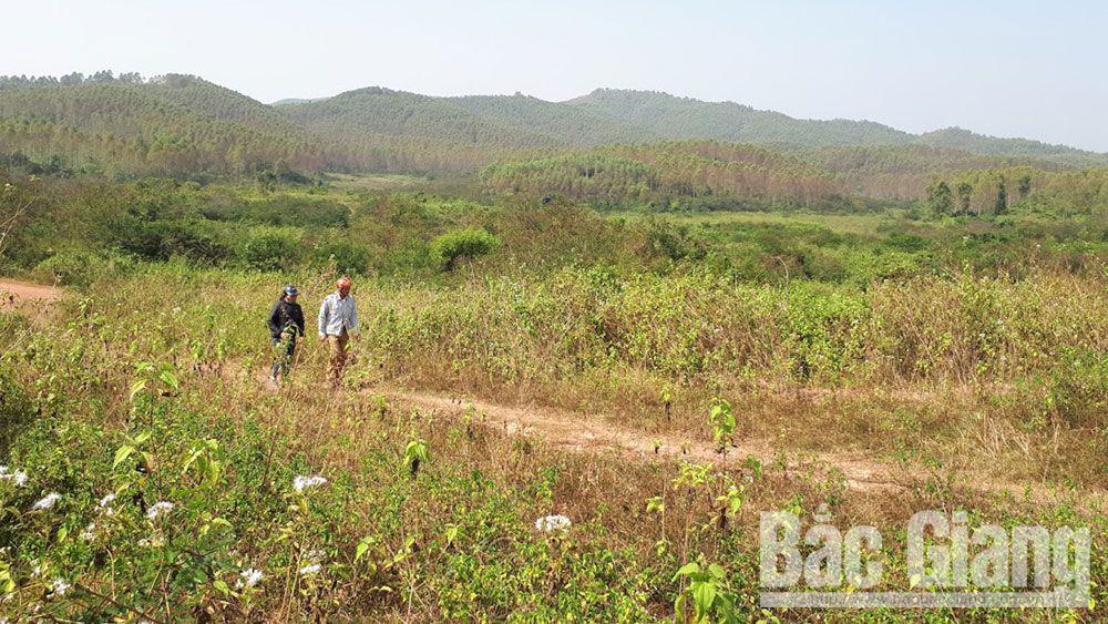 Trường bắn Quốc gia khu vực 1 (Trường bắn TB 1), hàng chục hộ dân thôn Tân Trung, xã Đồng Cốc, huyện Lục Ngạn (Bắc Giang), bồi thường đất, đất đai