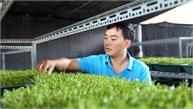 Nguyễn Văn Tiến khởi nghiệp từ nông nghiệp sạch