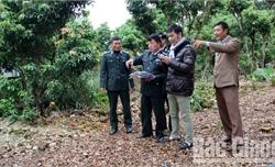 Bắc Giang còn tồn đọng 4 vụ việc thi hành án dân sự trọng điểm