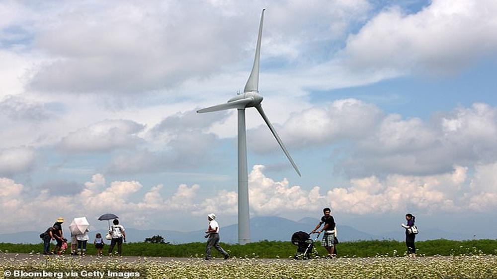 Đất nông nghiệp ở Fukushima được chuyển đổi để sản xuất năng lượng tái tạo