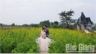 Chủ phim trường Rose Garden Lê Văn Dương: Làm giàu từ cánh đồng hoa