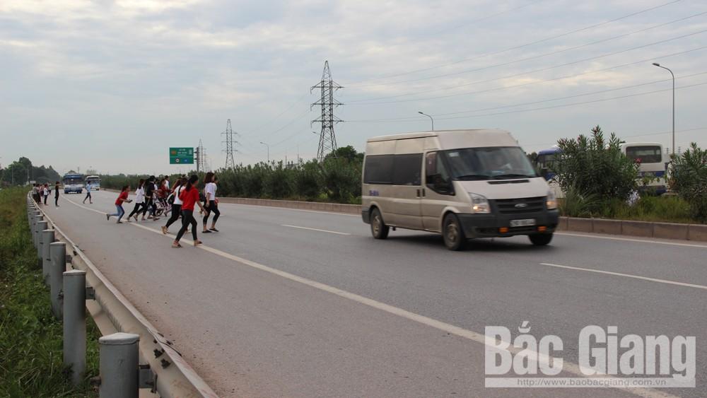 Cầu dân sinh, kế hoạch tổ chức thi công nhịp dầm cầu vượt QL1,, cầu vượt QL37,  cao tốc Hà Nội- Bắc Giang
