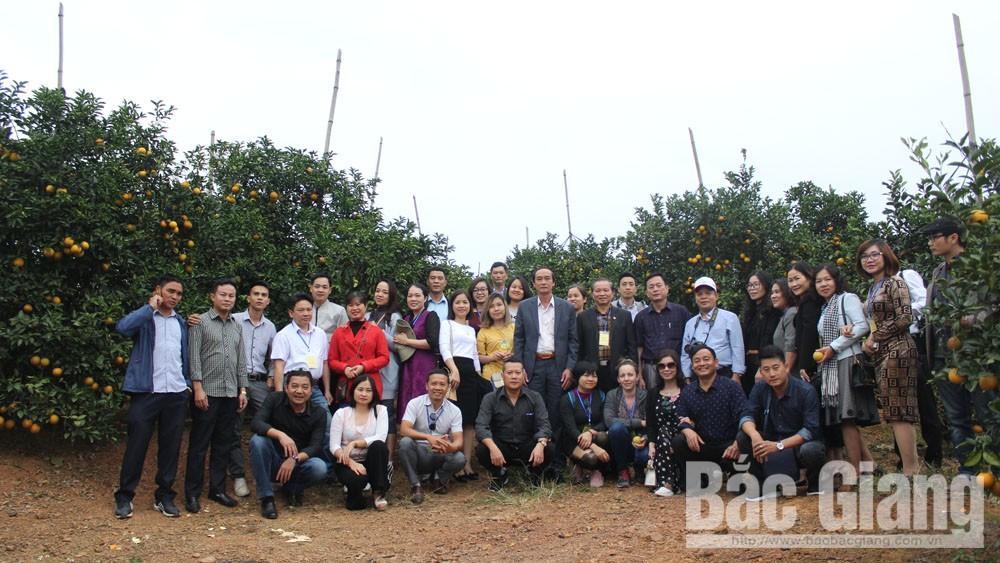 Khảo sát vùng cây ăn quả Lục Ngạn, Sở VHTTDL Bắc Giang, Lục Ngạn