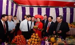 Khai mạc Hội chợ cam, bưởi và các sản phẩm đặc trưng huyện Lục Ngạn năm 2019