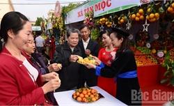 Hàng vạn du khách tham quan Hội chợ cam, bưởi và các sản phẩm đặc trưng huyện Lục Ngạn năm 2019