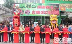 Khai trương gian hàng giới thiệu và bán nông sản chủ lực của tỉnh Bắc Giang tại Hà Nội