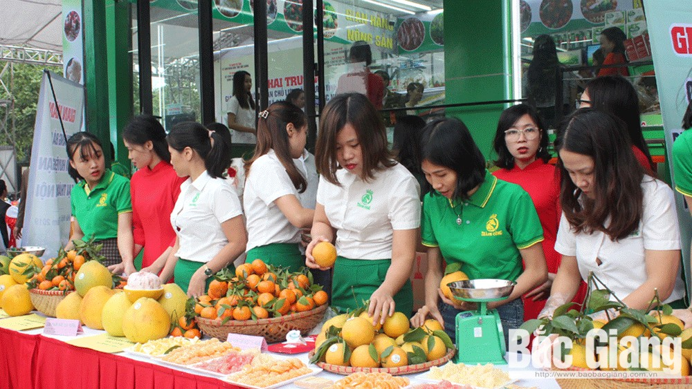 Bac Giang province, farm produce store, Hanoi, stamp for origin traceability, VietGAP procedure, orange and pomelo