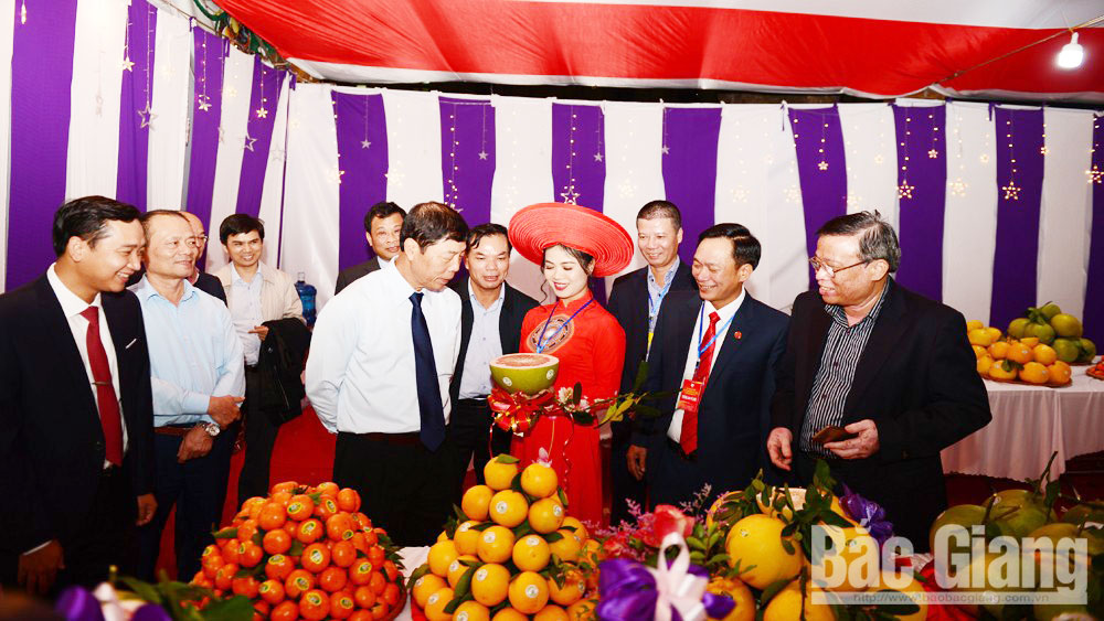 Luc Ngan 2019 Fair for orange, pomelo and signature products expand product consumption together with tourism development