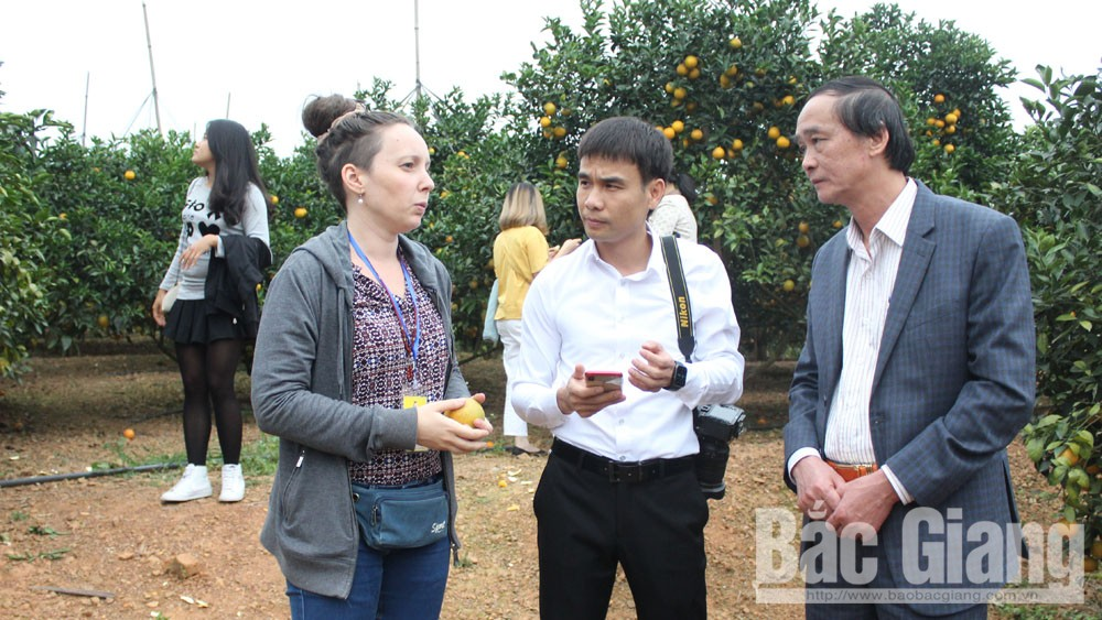 Luc Ngan district, fruit tree area, Bac Giang province, community-based tourism, development potential, fact-finding trip, fruit tree area