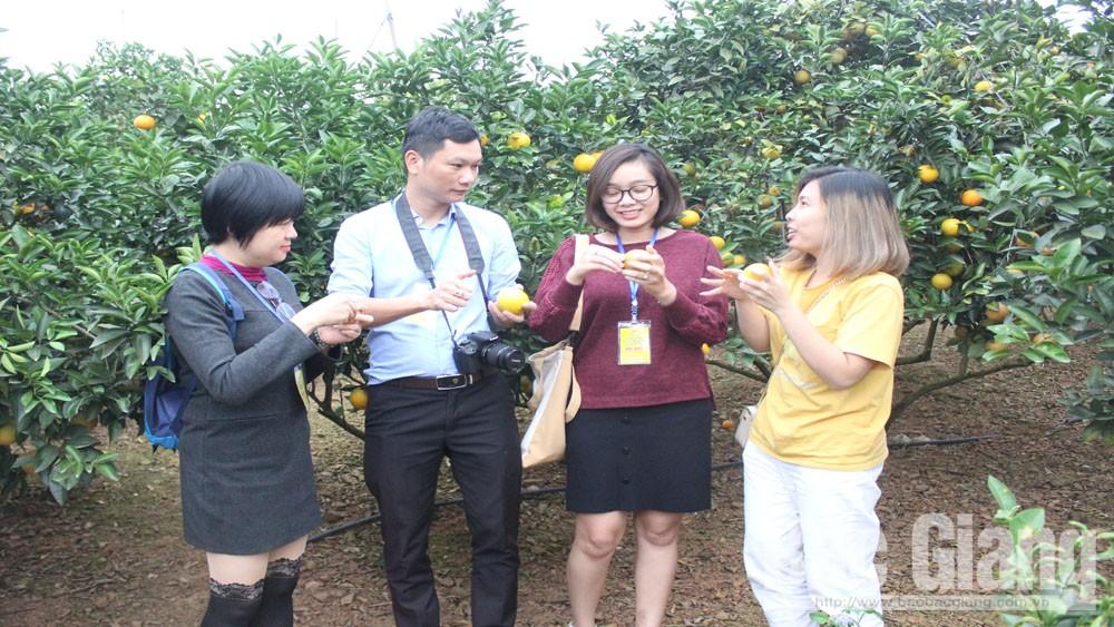 Surveying Luc Ngan fruit tree area, introducing community-based tourism development potential