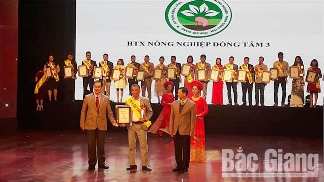 Bắc Giang: Nho đen không hạt và dưa lưới của HTX Đồng Tâm 3 lọt top thương hiệu, nhãn hiệu độc quyền uy tín