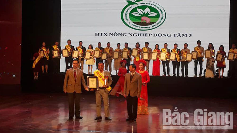 Bac Giang: Black seedless grape and melon of Dong Tam 3 Cooperative recognized as top 50 prestigious exclusive trademarks and brands in 2019
