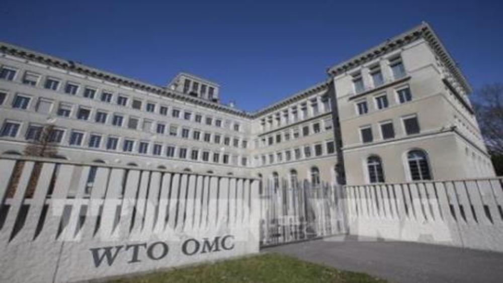 WTO, cảnh báo, xu hướng , lực lượng lao động, giảm mạnh tại nhiều nước