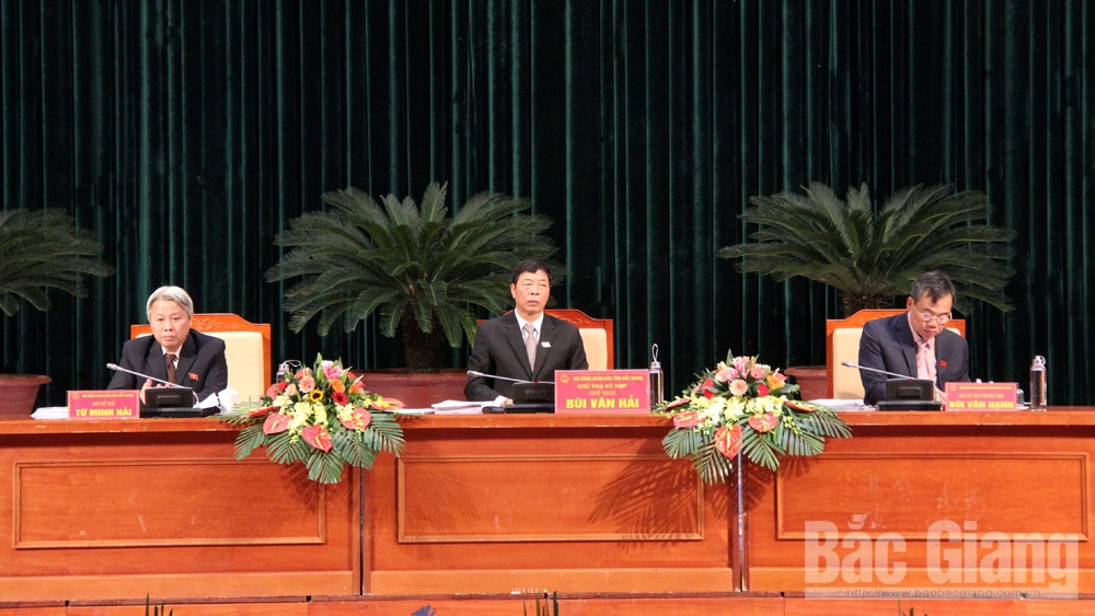Bac Giang's 2019 economic growth estimated at 16.2 percent, ranking second nationwide