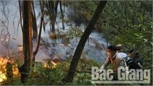 Cháy rừng tại xã Song Mai, TP Bắc Giang