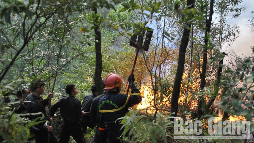 Cấp bách bảo vệ rừng mùa khô, cháy rừng quy mô lớn, biện pháp cấp bách