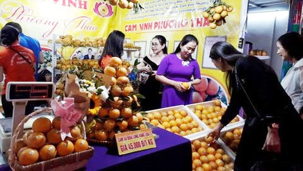 Vinh oranges, Nghe An specialties week, Hanoi, Big C Thang Long supermarket, diversified topography,  agricultural enterprises