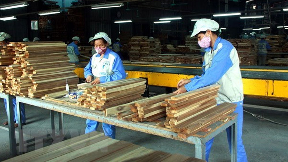 Forestry export, hit record, forestry sector, year-on-year rise,  trade surplus, overall growth, export activities