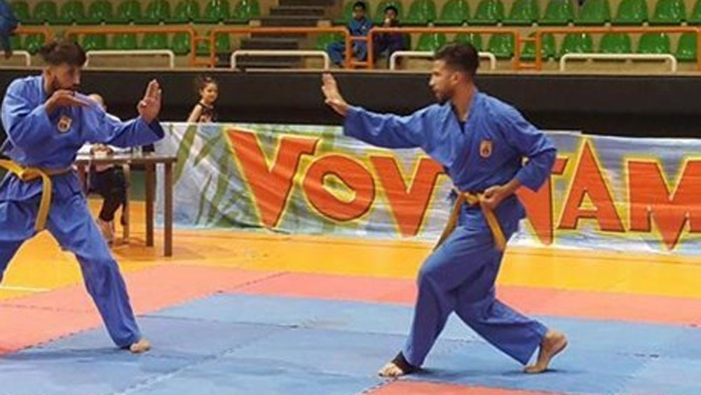 Vietnam, Vovinam world championships, best Vietnamese athletes, gold medals, martial artists