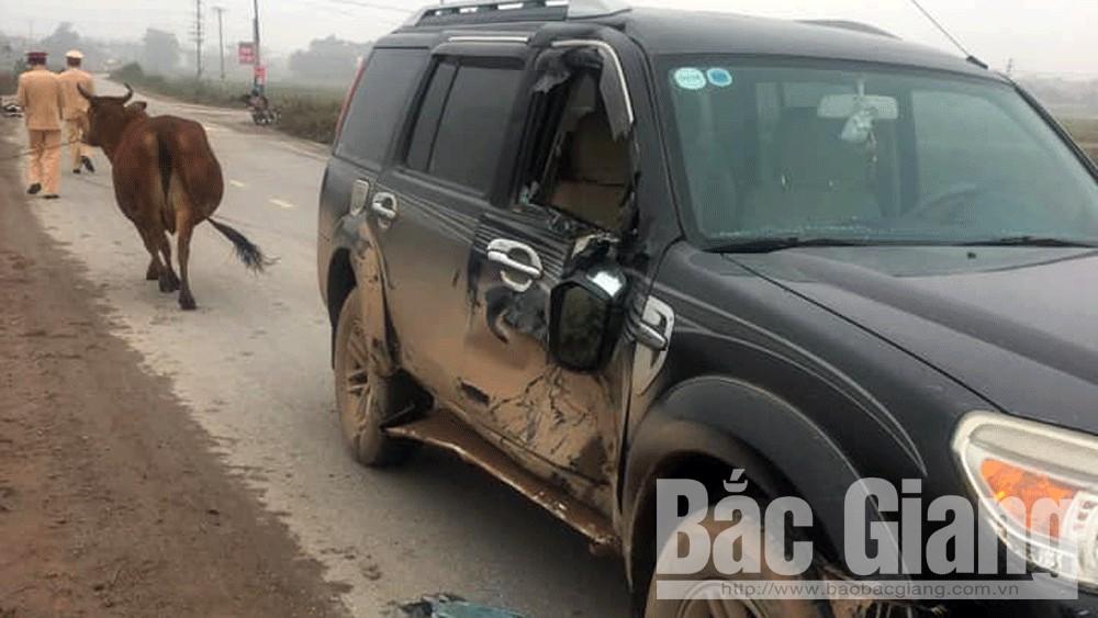 Xe ô tô hư hỏng sau tai nạn.