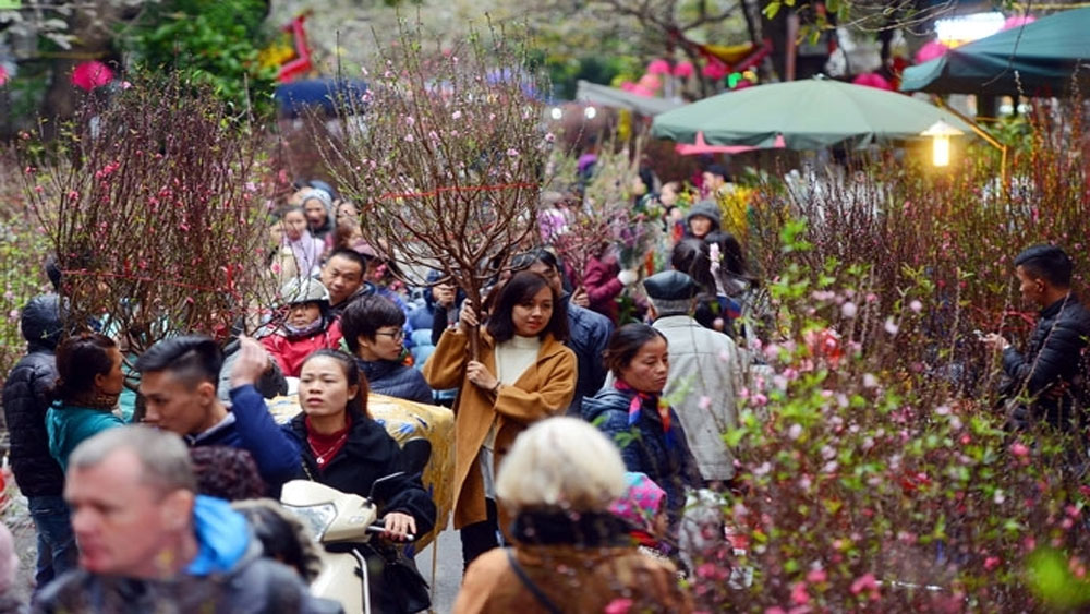 Hanoi to open 51 spring flower markets ahead of Tet